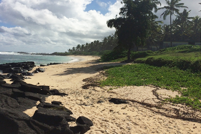 Resort de Frente de Playa